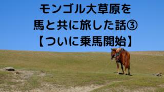 モンゴル大草原を 馬と共に旅した話③ 【ついに乗馬開始】