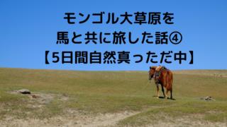 モンゴル大草原を 馬と共に旅した話④ 【5日間自然真っただ中】